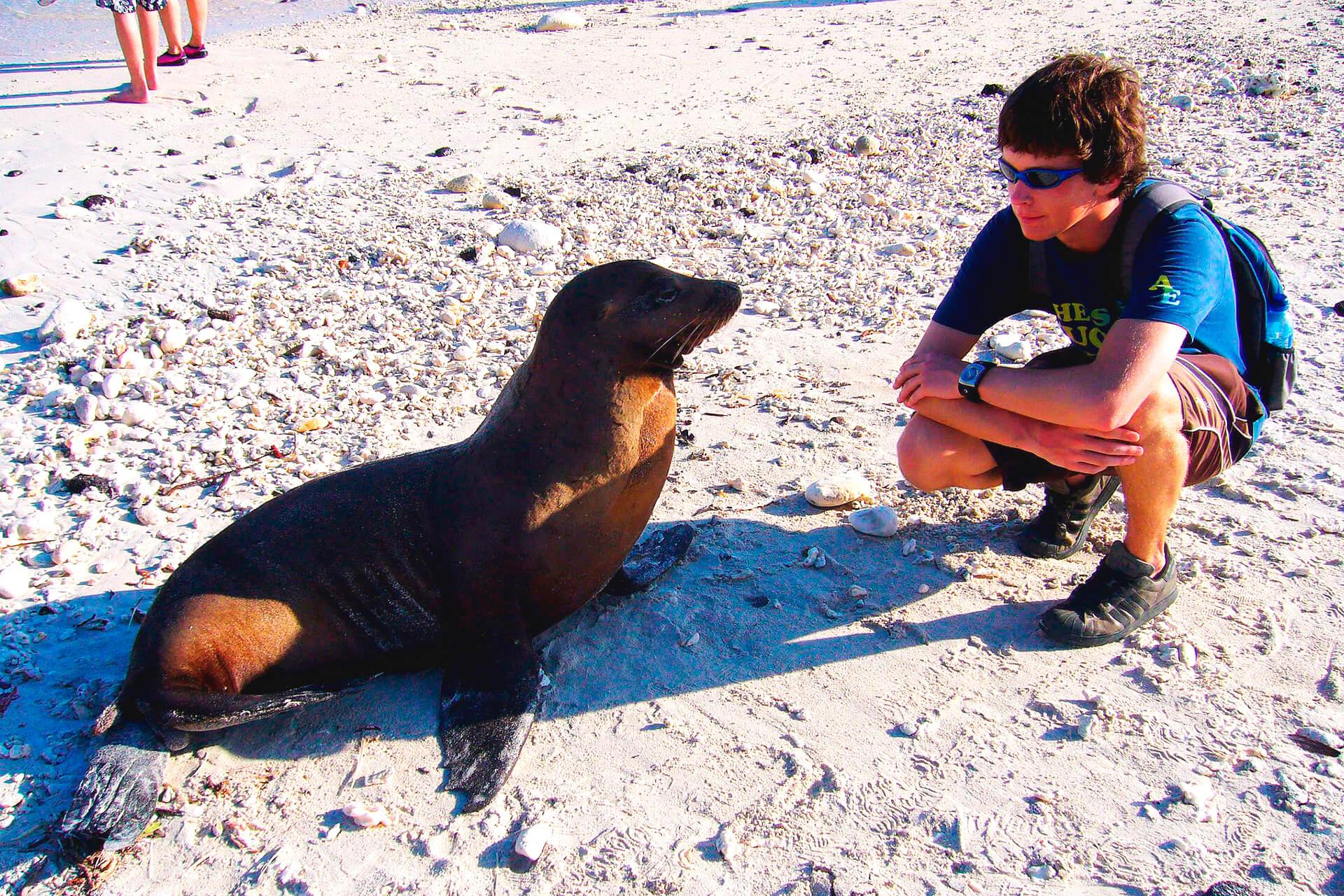 galapagos lobo marino con turista